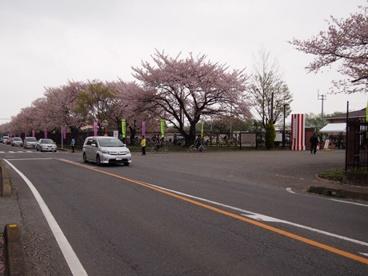陸上自衛隊新町駐屯地の画像1