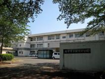 新沢小学校