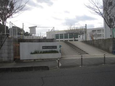畝傍南小学校の画像1