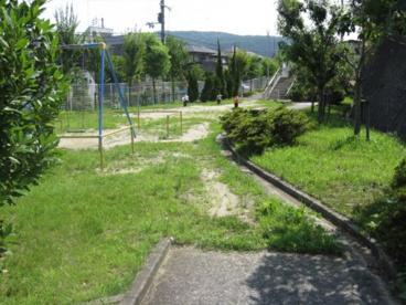 美しが丘第1公園の画像1