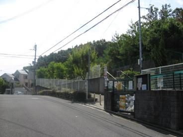 美しが丘第1公園の画像2
