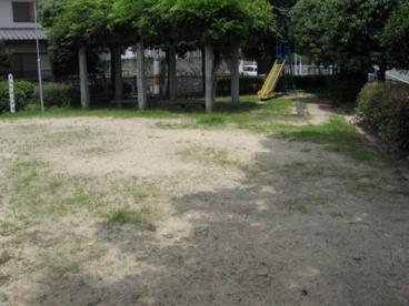 寺谷町ばら公園の画像3