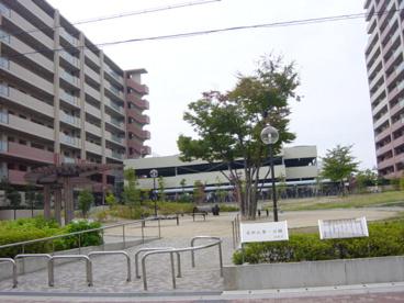 富田丘第一公園の画像1
