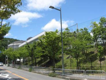大阪薬科大学の画像1