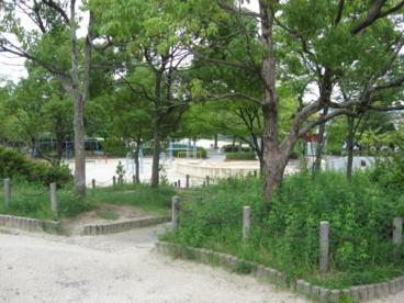 南平台中央公園の画像5