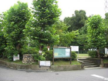 日吉台北公園の画像1