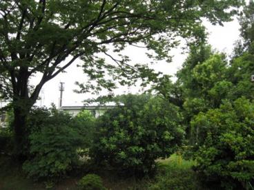 日吉台北公園の画像3