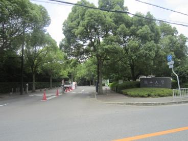 関西大学高槻図書室の画像1