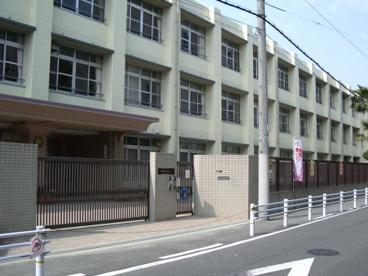 すみれ小学校の画像1