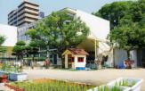 銅座幼稚園