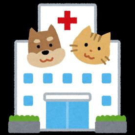 フレックス動物病院 ペットホテル 避妊手術 去勢手術 ワクチン 日曜診療 休日診療の画像1
