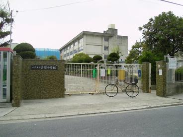 八尾市立 美園小学校の画像1