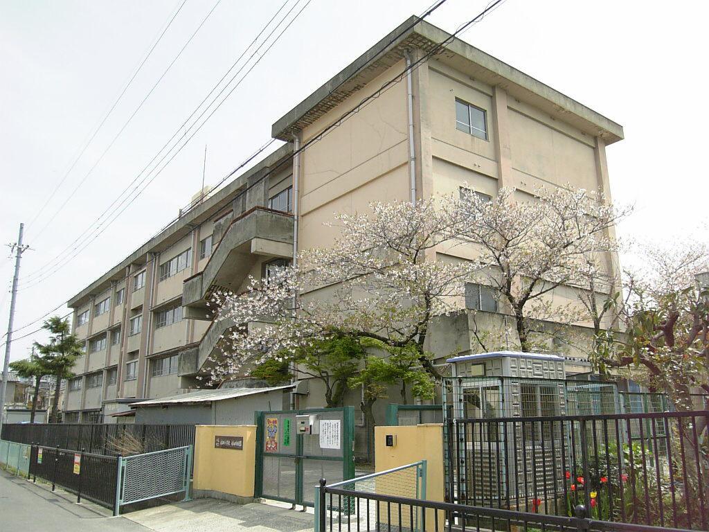 八尾市立 永畑小学校の画像