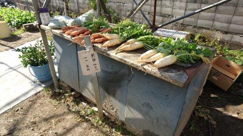 蛍池にあった新鮮野菜の無人販売所の画像