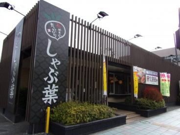 しゃぶ葉 大和中央店の画像1