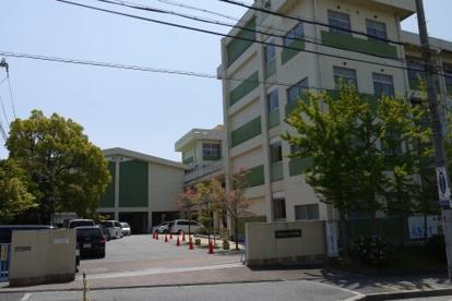 松が丘小学校の画像1
