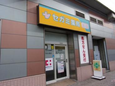 セガミ薬局大和中央店の画像1