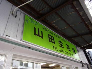 山田生花店の画像1