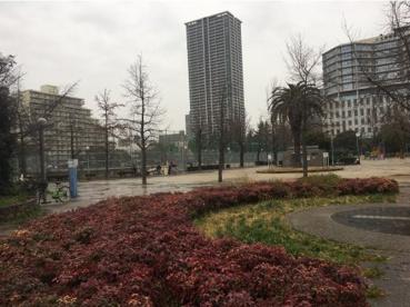 下福島公園の画像2