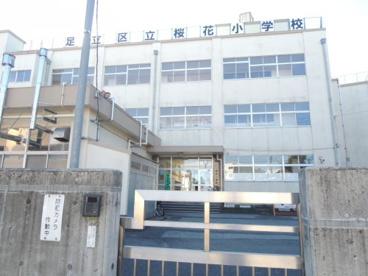 足立区立桜花小学校の画像1