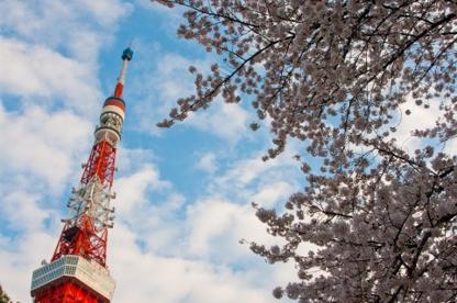 東京タワーの画像1