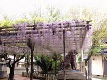 海老江上公園