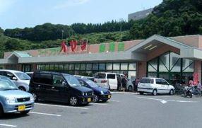 (株)ハヤシ 白里店の画像1