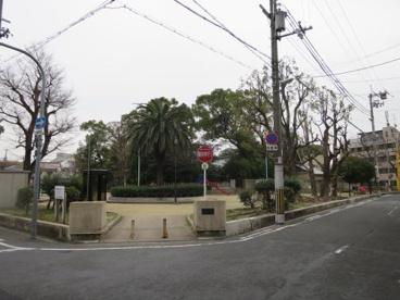 大宮中公園の画像1