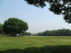 大泉緑地の画像1