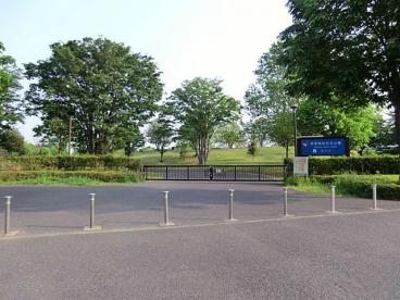国営昭和記念公園の画像1