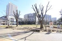 松原団地西口公園