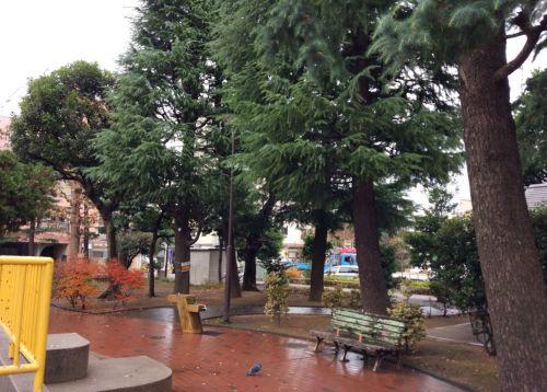 栄町公園の画像