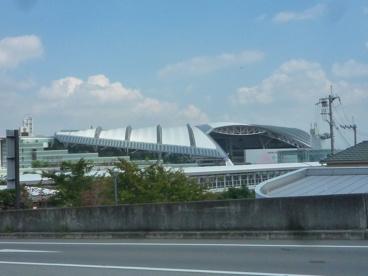 阪神競馬場の画像2