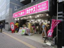 カクヤス 幡ヶ谷店