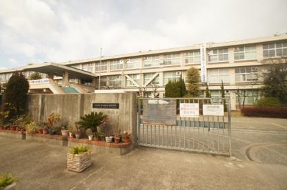 東住吉総合高等学校の画像2