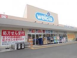 ウエルシア鳳中町店の画像1