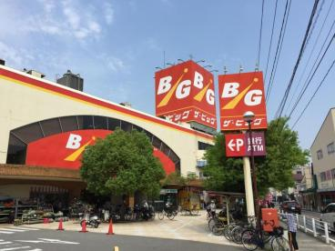 ザ・ビッグ戸坂店の画像1