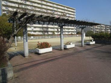 芝生公園の画像2