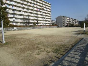 芝生公園の画像3