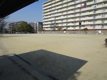 芝生公園の画像5