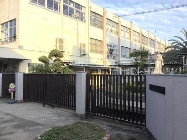 新堂小学校の画像1