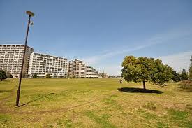 桃井原っぱ公園の画像2