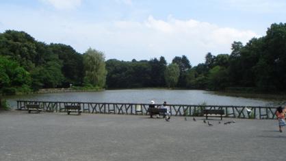 善福寺公園の画像1