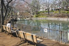 馬橋公園の画像2