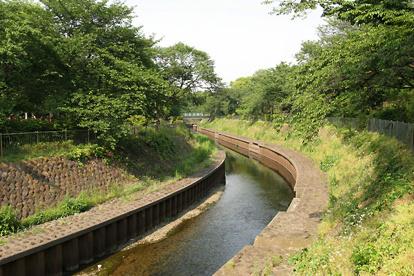 善福寺川緑地の画像2