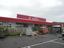 ジュンテンドー 吉田店