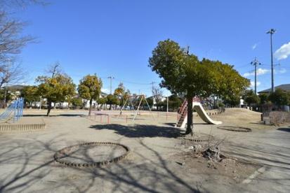 しいのき公園の画像1