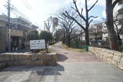 今川緑道の画像2