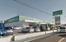 エバグリーン和泉芦部店