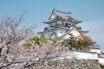 岸和田城の画像1